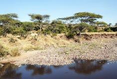 Jezioro z skałami w wybrzeżu Zdjęcia Stock