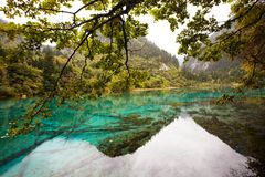 jezioro zaciszność zdjęcie royalty free