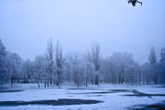 jezioro zimy mrożone krajobrazu Obraz Stock