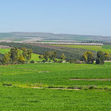 Jezreel Valley in Israel Stock Photography