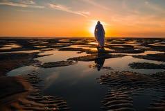 Jezus Chrystus Niskiego przypływu baseny Fotografia Royalty Free