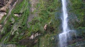 Jezzine Waterfall (Jezzine-Lebanon). Water falls along a verdant cliff face Royalty Free Stock Image