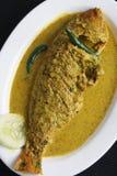 Jhol de Maacher - um caril bengali dos peixes Foto de Stock