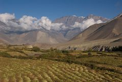 Jhong Khola valley fields royalty free stock image