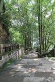 jiajiang一千菩萨峭壁,四川,瓷风景  免版税库存图片