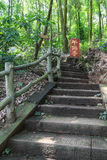 jiajiang一千菩萨峭壁,四川,瓷风景  库存图片