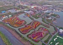 Jiangsu yancheng: de luchtfotografie van 30 miljoen tulpen in Nederland bedwelmt Stock Foto