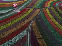 Jiangsu yancheng: de luchtfotografie van 30 miljoen tulpen in Nederland bedwelmt Royalty-vrije Stock Afbeelding