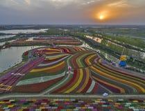 Jiangsu yancheng: de luchtfotografie van 30 miljoen tulpen in Nederland bedwelmt Stock Foto's
