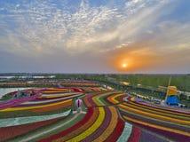 Jiangsu yancheng: de luchtfotografie van 30 miljoen tulpen in Nederland bedwelmt Royalty-vrije Stock Foto's