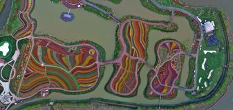 Jiangsu yancheng: de luchtfotografie van 30 miljoen tulpen in Nederland bedwelmt Stock Fotografie