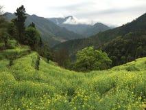 Jiangxi Mountains Royalty Free Stock Photos