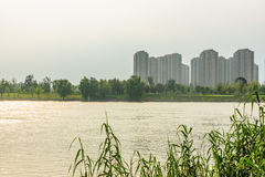 Jiangxinzhou Islet and Residential building Royalty Free Stock Image