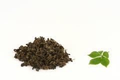 Jiaogulan chińczyka imienia Gynostemma pentaphyllum Thunb Makino suchy i liście Fotografia Stock