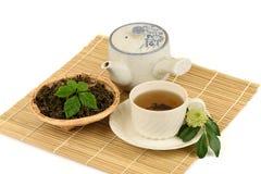 Jiaogulan Chinese name Gynostemma pentaphyllum Thunb Makino Stock Photos