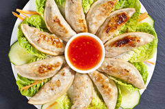 Jiaozi fritto fotografia stock