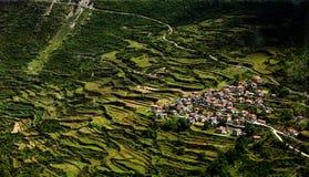 Jiarong-Wohnsitz in den grünen Terrassen lizenzfreie stockfotos