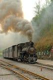 Jiayang Китай- поезд узкой колеи готовый для того чтобы пойти Стоковое Фото