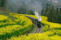 Jiayang China-The little train in forward Stock Photos