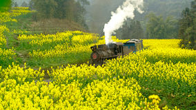 Jiayang China-The little train in forward Stock Image