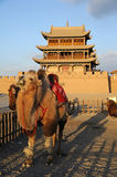 JiaYuGuan city with camel Stock Image