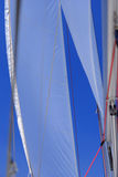Jib sail and rigging on sailboat Royalty Free Stock Photo