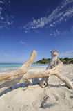 Jibacoa beach, cuba Royalty Free Stock Images