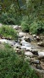 Jibhi Himachal Pradesh lizenzfreie stockfotos