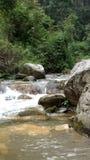 Jibhi Himachal Pradesh stockfotografie