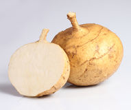Jicama Royalty Free Stock Photo
