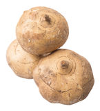 Jicama Or Mexican Yam VII Royalty Free Stock Photography