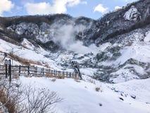 Jigokudani, conosciuto in inglese come valle dell'inferno è la fonte di h fotografie stock
