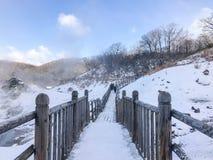 Jigokudani, conosciuto in inglese come valle dell'inferno è la fonte di h immagine stock libera da diritti