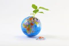 Jigsaw Earth plant Stock Photo