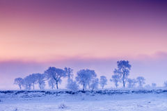 Jilin Rime beautiful island scenery. Nature, Beauty royalty free stock images