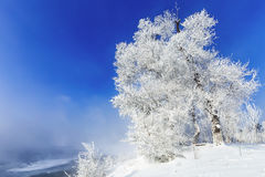 Jilin Rime Royalty Free Stock Photography