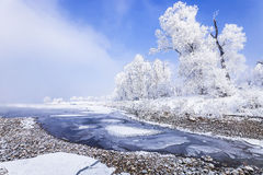 Jilin Rime Stock Photography