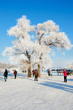 The Jilin rime and travelers. The photo was taken in Wusong island Ulla manchu town Longtan district Jilin city Liaoning provence,China stock photos