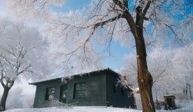 Jilin rimfrost Royaltyfria Bilder