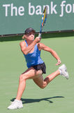 Jill CRAYBAS at the 2009 BNP Paribas Open Royalty Free Stock Image