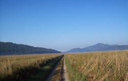 Jim Carbett National Park Uttarakhand Indien Arkivbild
