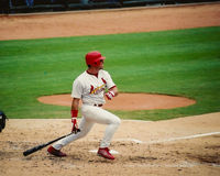 Jim Edmonds St Louis Cardinals Royaltyfri Fotografi