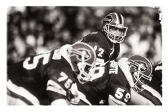 Jim Kelly Buffalo Bills royalty-vrije stock foto's