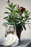 Jim Morrison's Grave 2 Stock Photo