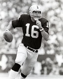 Jim Plunkett Royalty Free Stock Photography