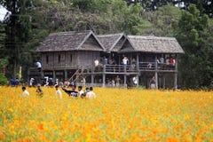 Jim Thompson Farm, Thailand. stock photo