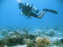 jim tropikalny akwalung przygody Zdjęcia Royalty Free