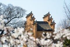 jiming的南京寺庙 免版税库存图片