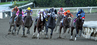 Jimmy Creed Wins The 2012 Malibu Stakes Royalty Free Stock Images