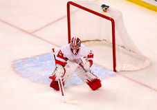 Jimmy Howard Detroit Red Wings Stock Images